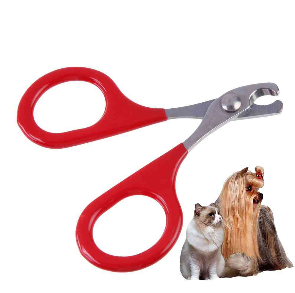 Professional Pet Dog / Cat / Puppy Nail Clippers - Toe Claw Scissors, Trimmer, Pet Grooming