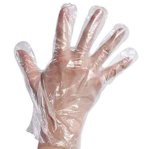 100 Pcs Plastic Disposable Sanitary Gloves - Edible Disposable  Gloves