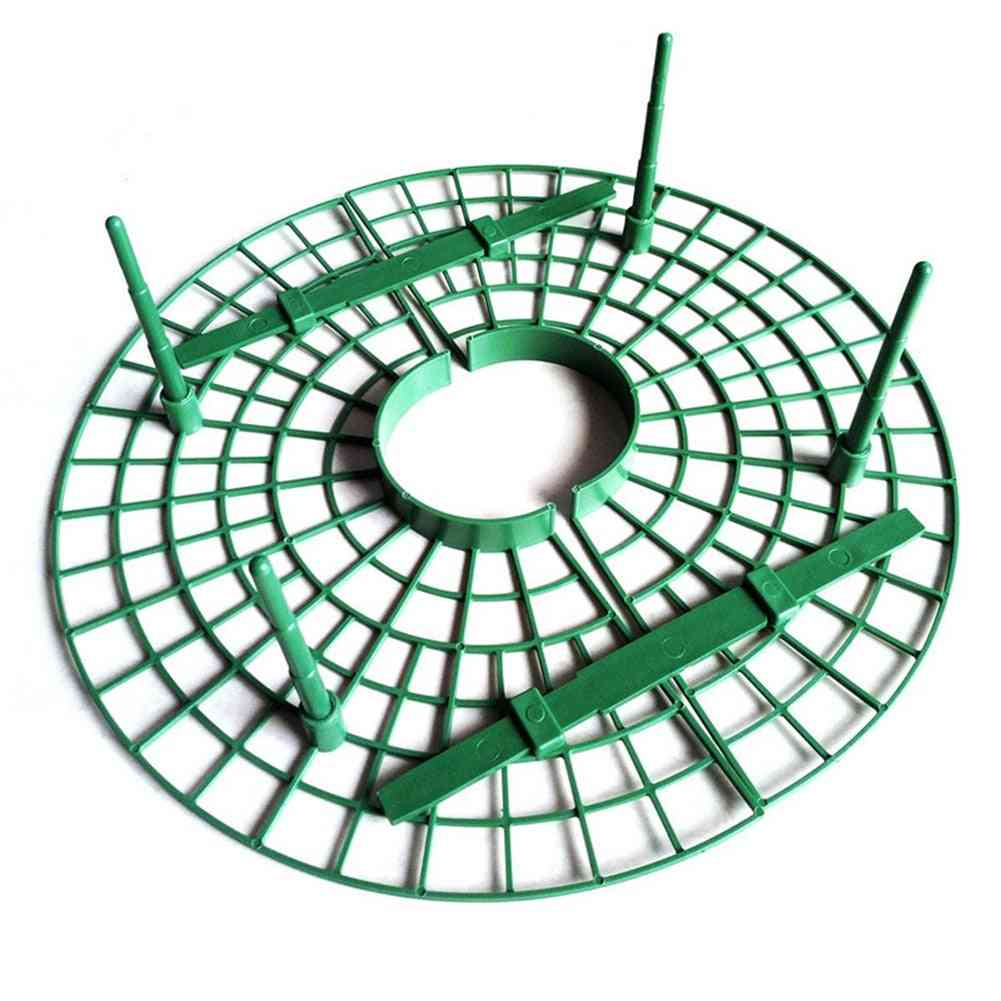 5pcs Plant Plastic Strawberry, Growing Circle Support Rack