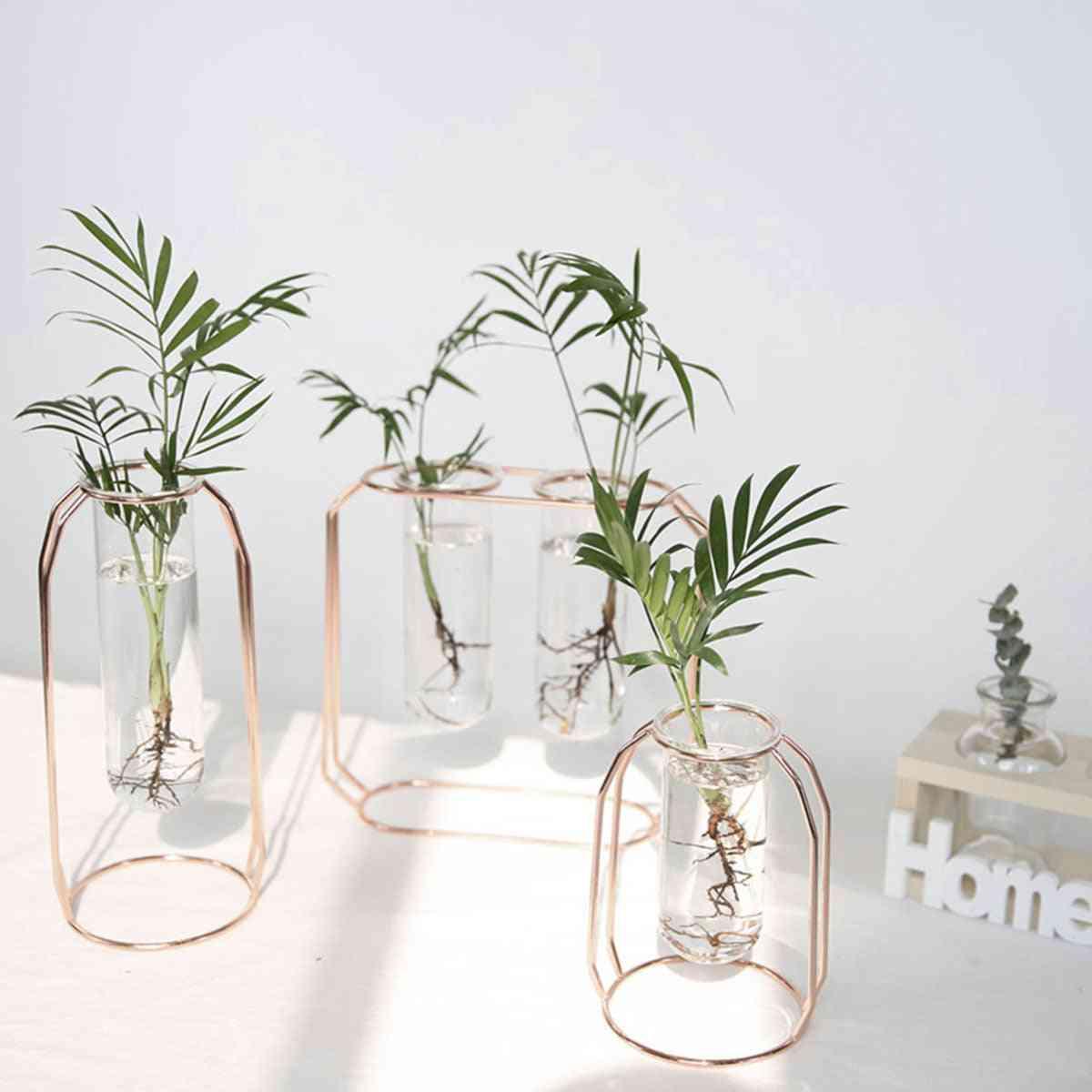 Nordic Golden Glass Vase - Iron Hydroponic Plant Tabletop Flower Holder
