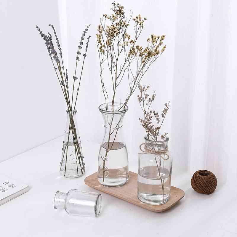 Simple Creative Glass Hydroponic Plants Vase