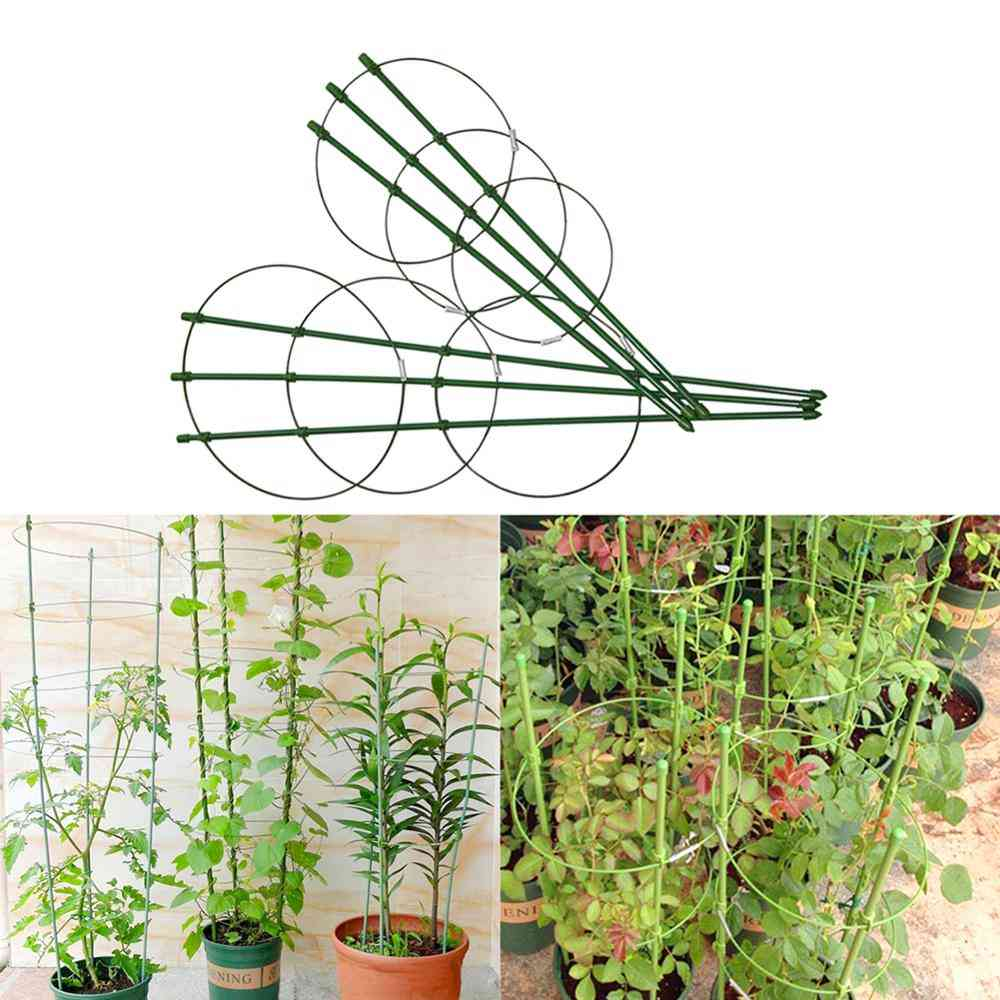 Durable And Creative, Plastic Coated Plant Support Frame