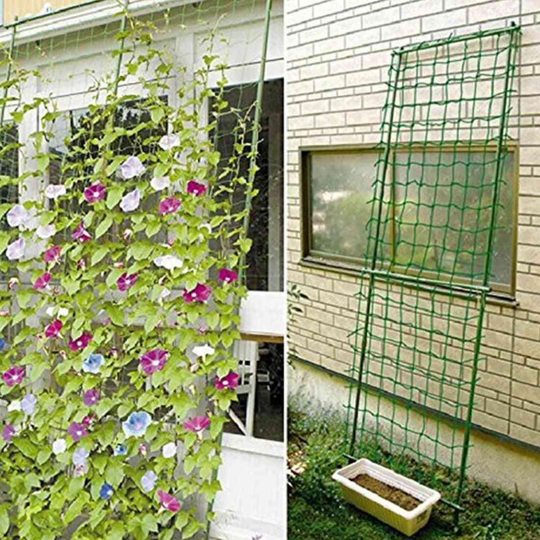 Garden Fence Millipore Nylon Net, Climbing Frame Gardening Net