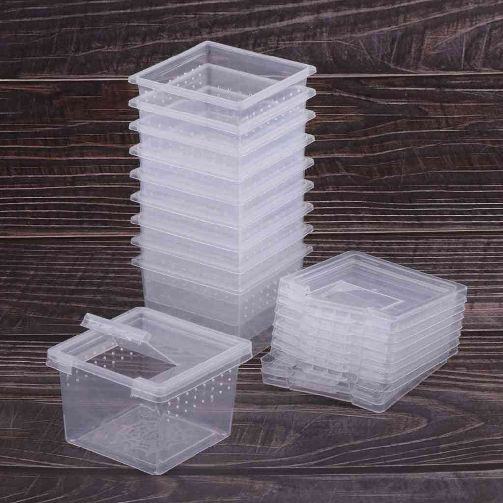 Feeding Box, Reptile Cage, Rearing Tank For Lizards - Tortoise, Spider, Beetle Insect  Hatching Container For House