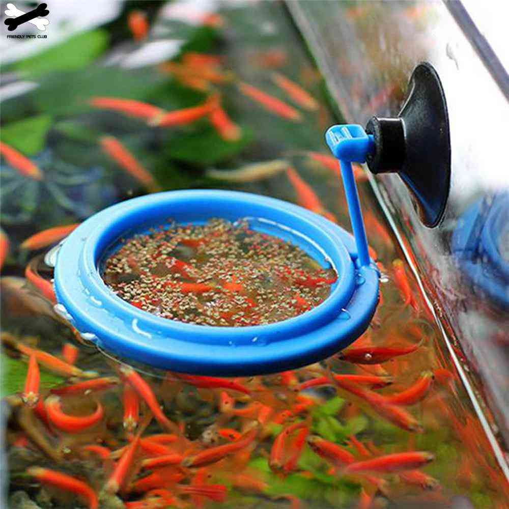 Aquarium Feeding Ring Fish Tank Station Floating Food Tray Feeder Square Circle Accessory Water Plant Buoyancy Suction Cup
