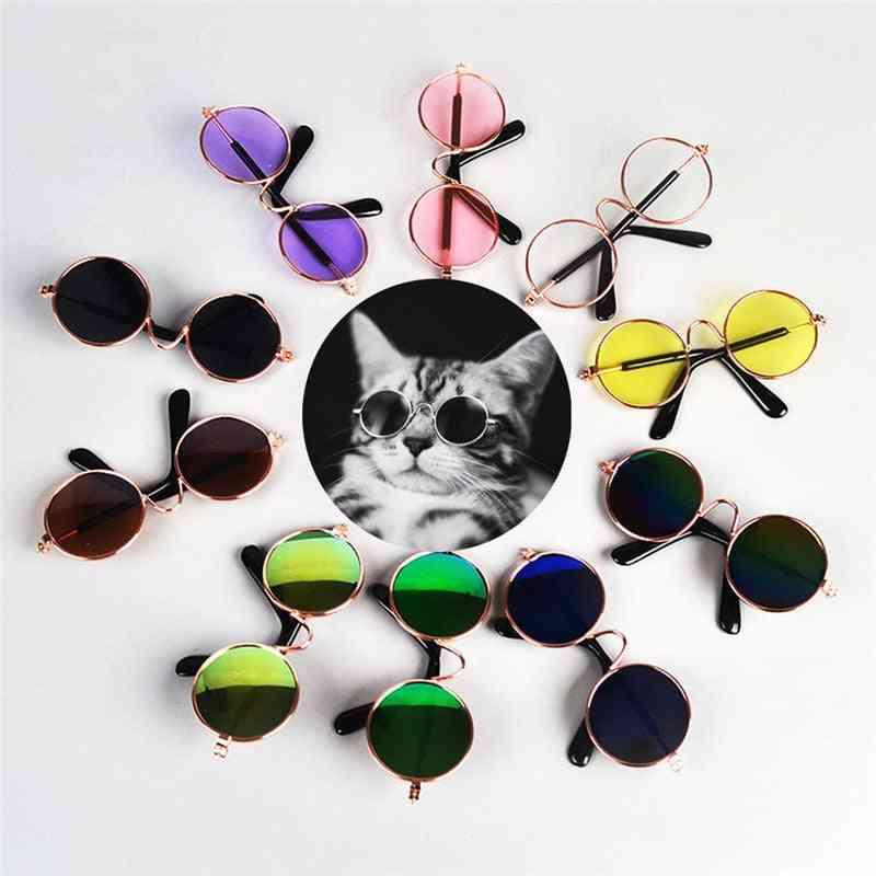 Cute Pet Glasses - Pet Eye Wear, Pet Sunglasses Photos Props