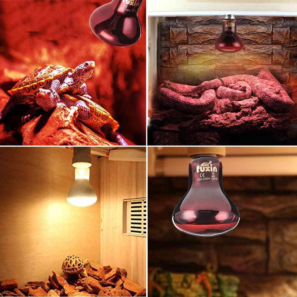 Mini Pet Heating Lamp - E27 Uv Day Night Amphibian Turtle, Snake Lamp Heat Bulb Light
