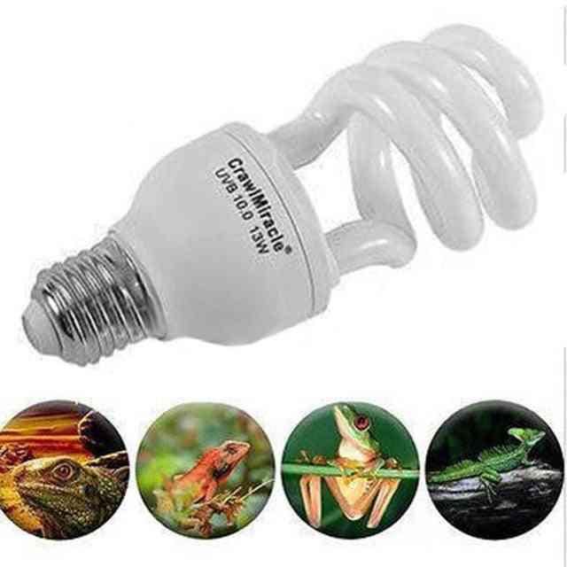 Energy Saving, 13w-uvb Light Bulb For Reptiles