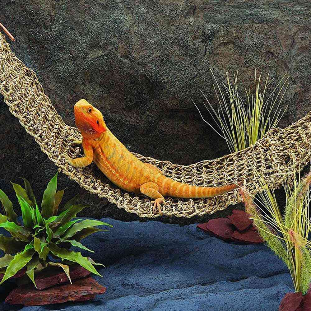 Seaweed Lizard Hammock Swing - Pet Lounger Reptile Toy Hanging Bed Mat