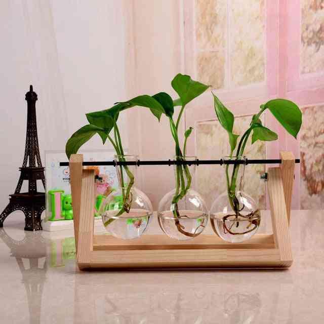 Creative Hydroponic Plant - Transparent Terrarium Wooden Frame Vase Decorations