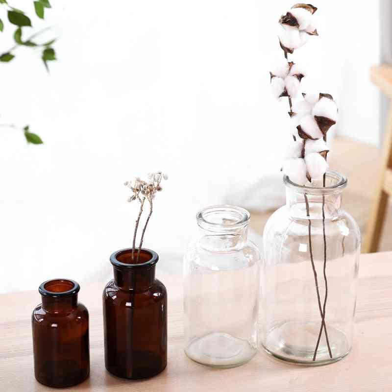 Transparent Glass Flower Vase - Hydroponic Bottle For Decoration