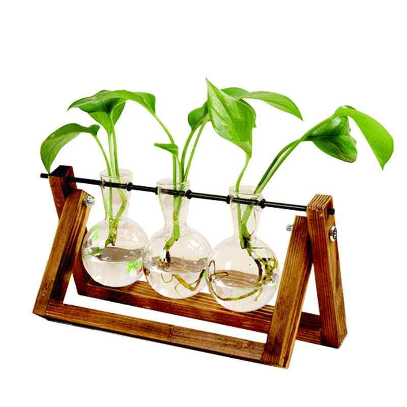 Creative Hydroponic Transparent Plant Vase With Wooden Frame