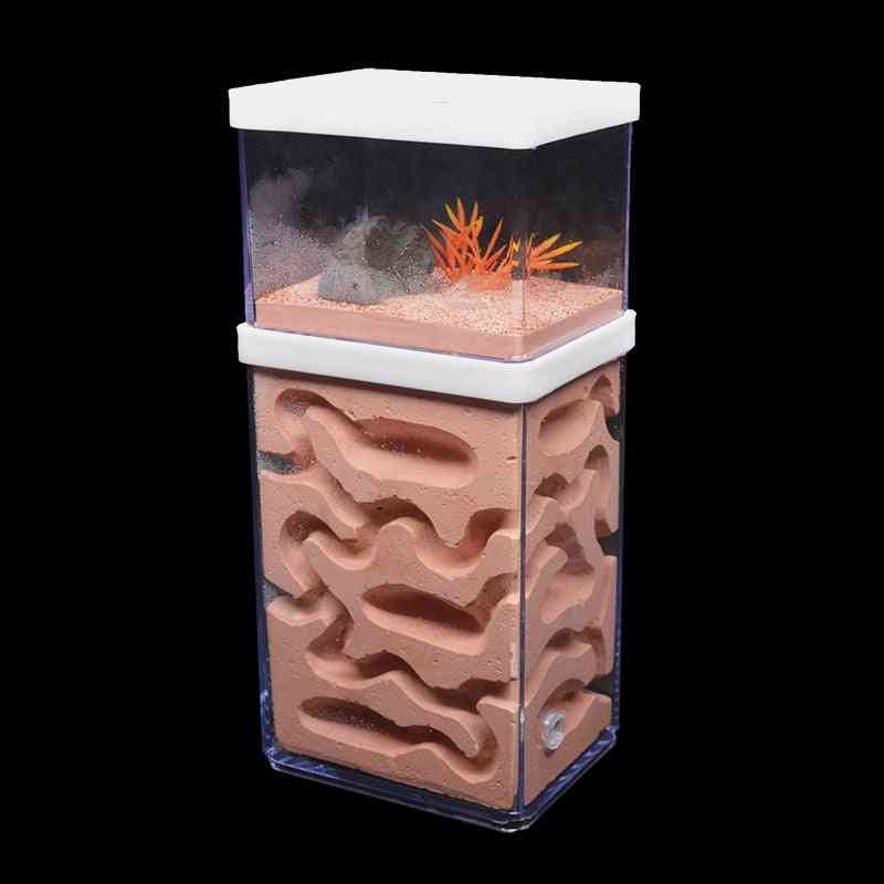 New Large Plaster Ant Farm Natural Ecological Big Ant Nest Insect Castle Workshop Feeding Area