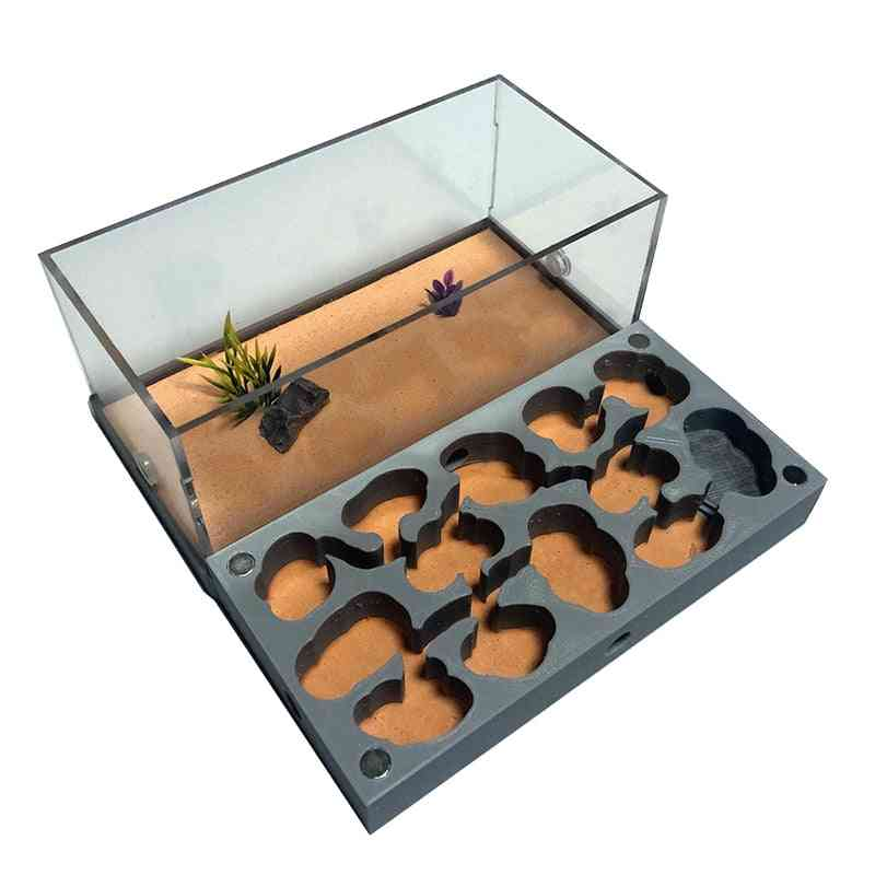 3d Acryl Flat Ant Farm Ecological Ant Nest With Feeding Area - Concrete Ant House Pet Anthill Workshop Moisturizing Water Pool