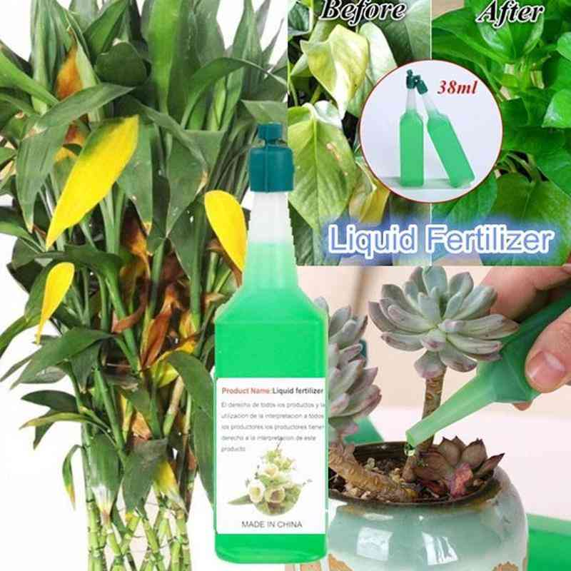 Hydroponic Plant Nutrient Solution Fertilizer - Rich Bamboo Flower Fertilizer, Potted Green Concentrated Foliar Seed Fertilizer