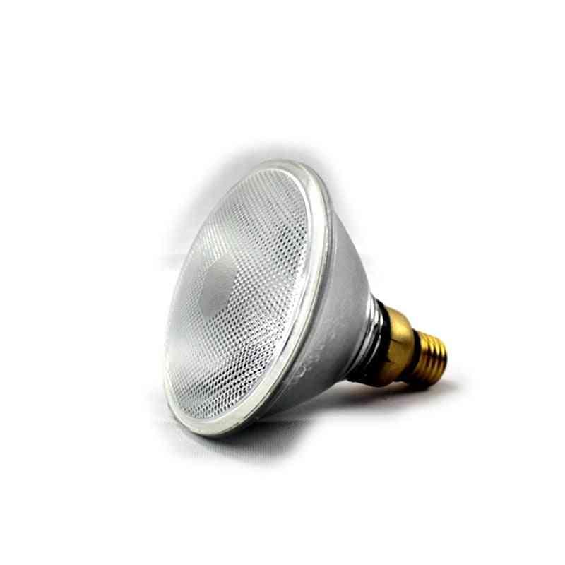 80w Halogen Lamp 220vac