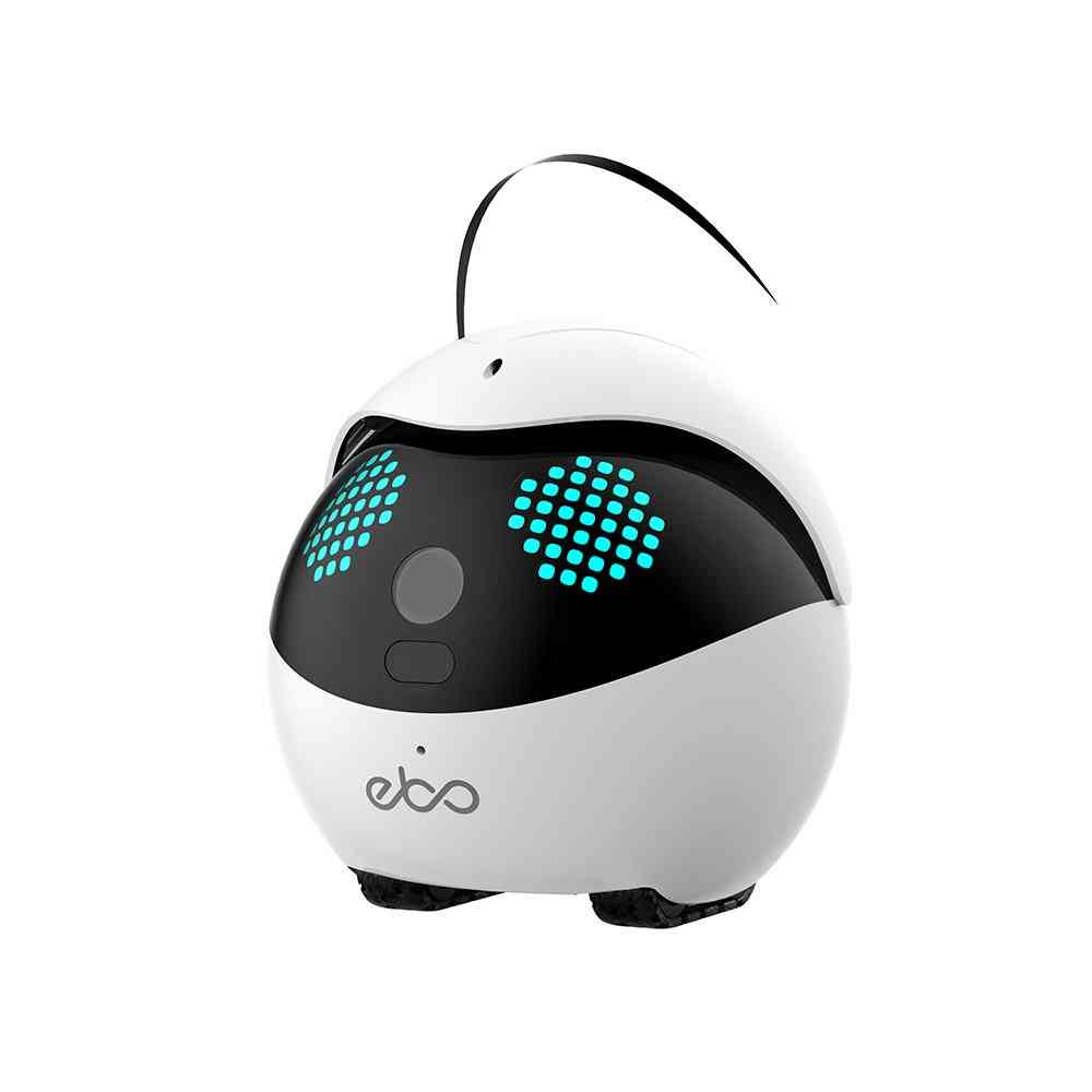 Ebo Catpal The Smart Robot Companion For Cat