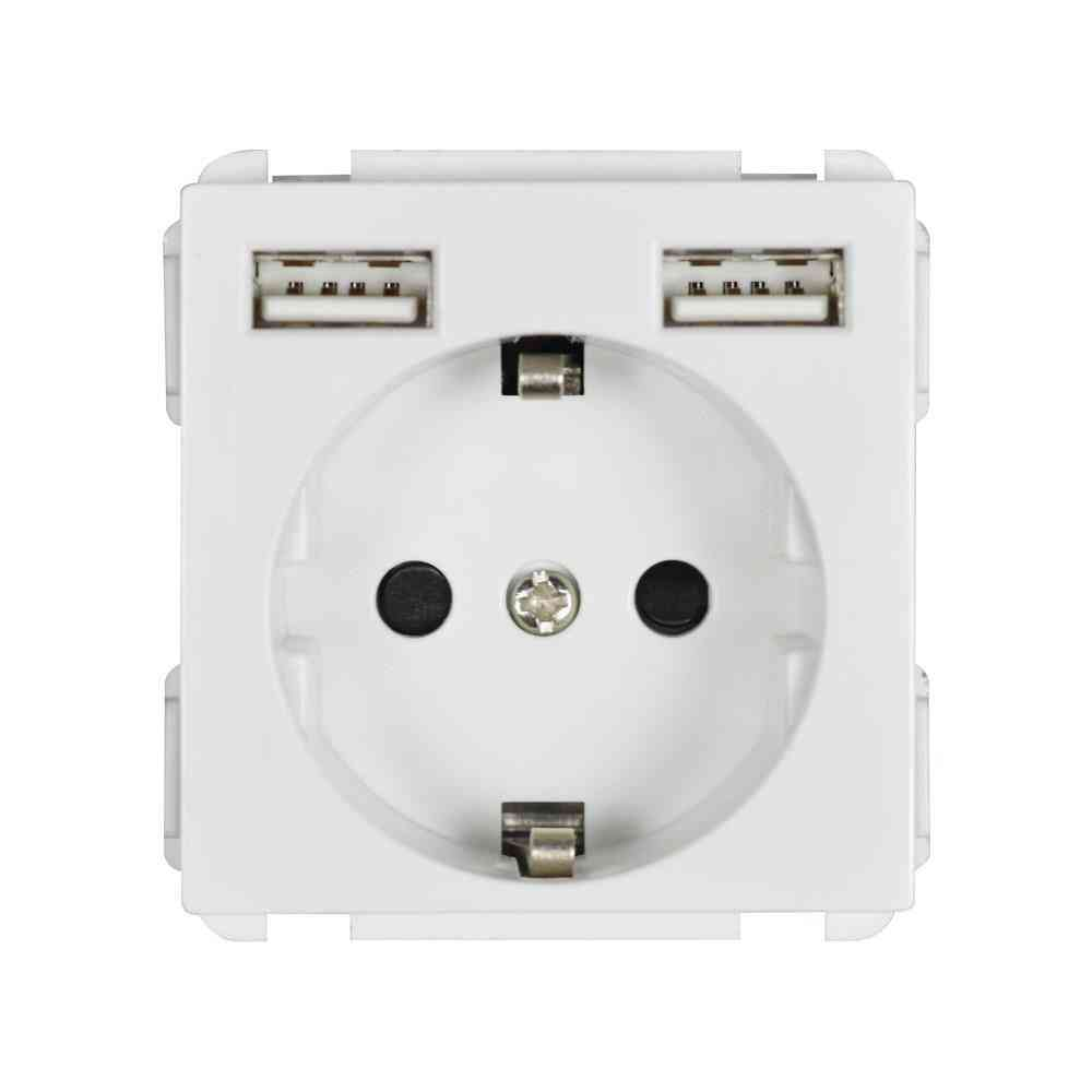 Standard Module  Socket With Two Usb Output  (52mm*52mm )