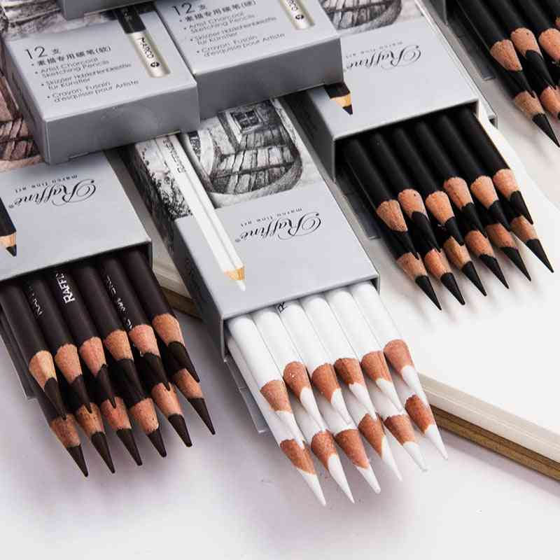 Pencil Professional Sketch Highlights, Art Students, Artist Beginner, Hand-painted Painting Set