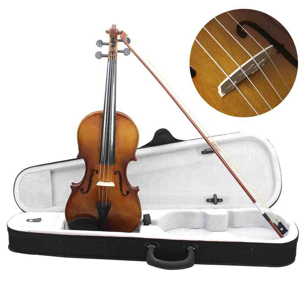 Violin Full Size Vintage With Case Rosin Bow Strings Student Beginner Learning Tool With Tough Plastic Panel