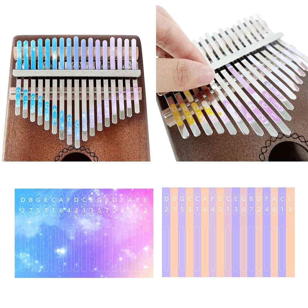 Scale Key Sticker Percussion Parts Accessories For Learner Musical Instrument Kit