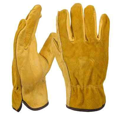 Windproof, Anti-cold Sports Gloves