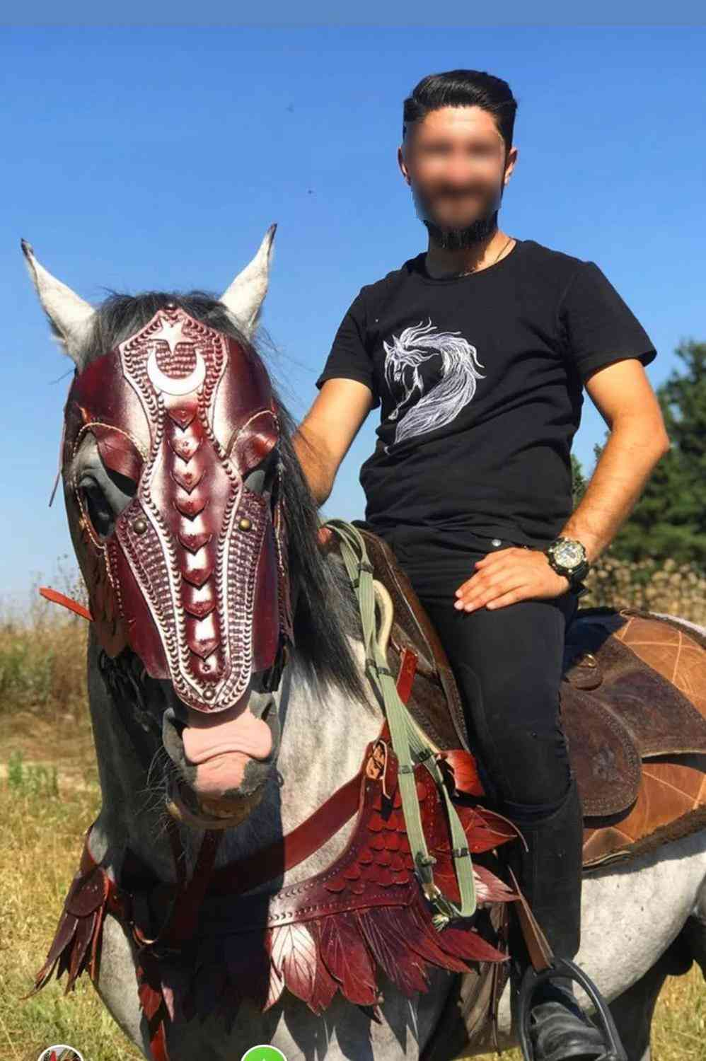 Leather Horse Breast Collar And Head Armor