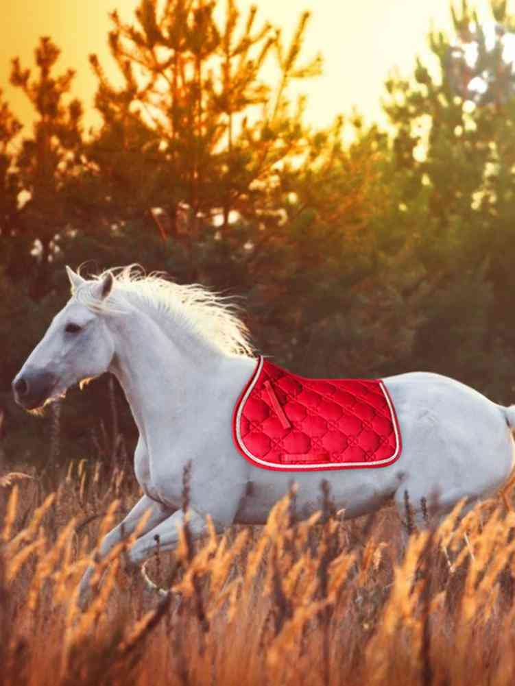 Sweat-absorbent, Breathable Horse Saddle Pad