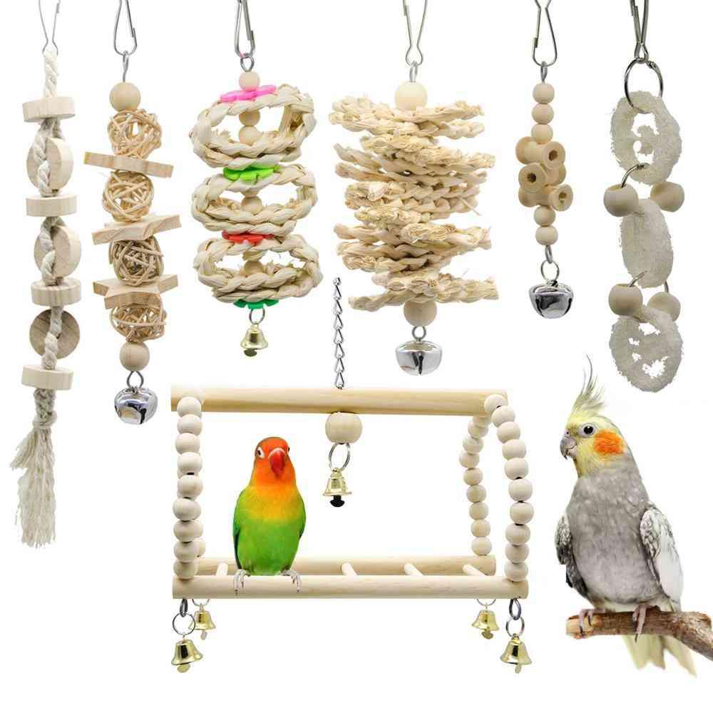 Bird Cockatiel Parrot And Accessories