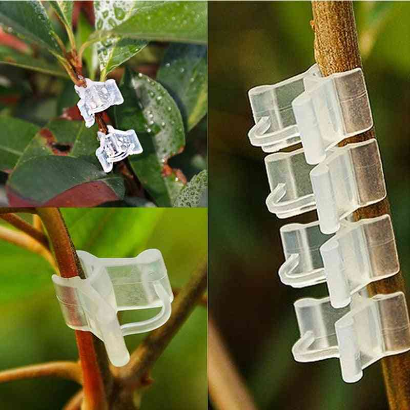 Plastic Plant Support Clips For Fixed Vegetables / Garden Ornament