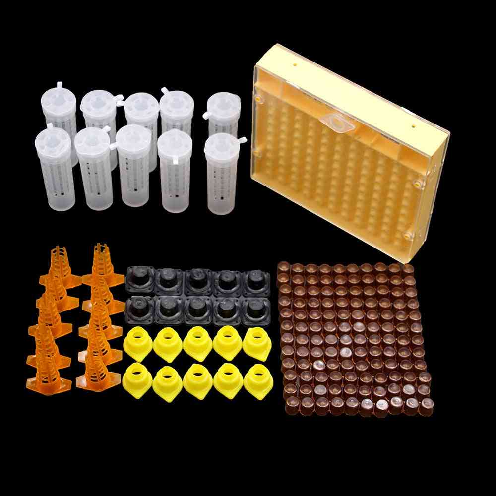 Beekeeping King Queen Bee Rearing System Box, Plastic Cup & Cell Protection Cover Cage Apiculture Kit Bees Tools