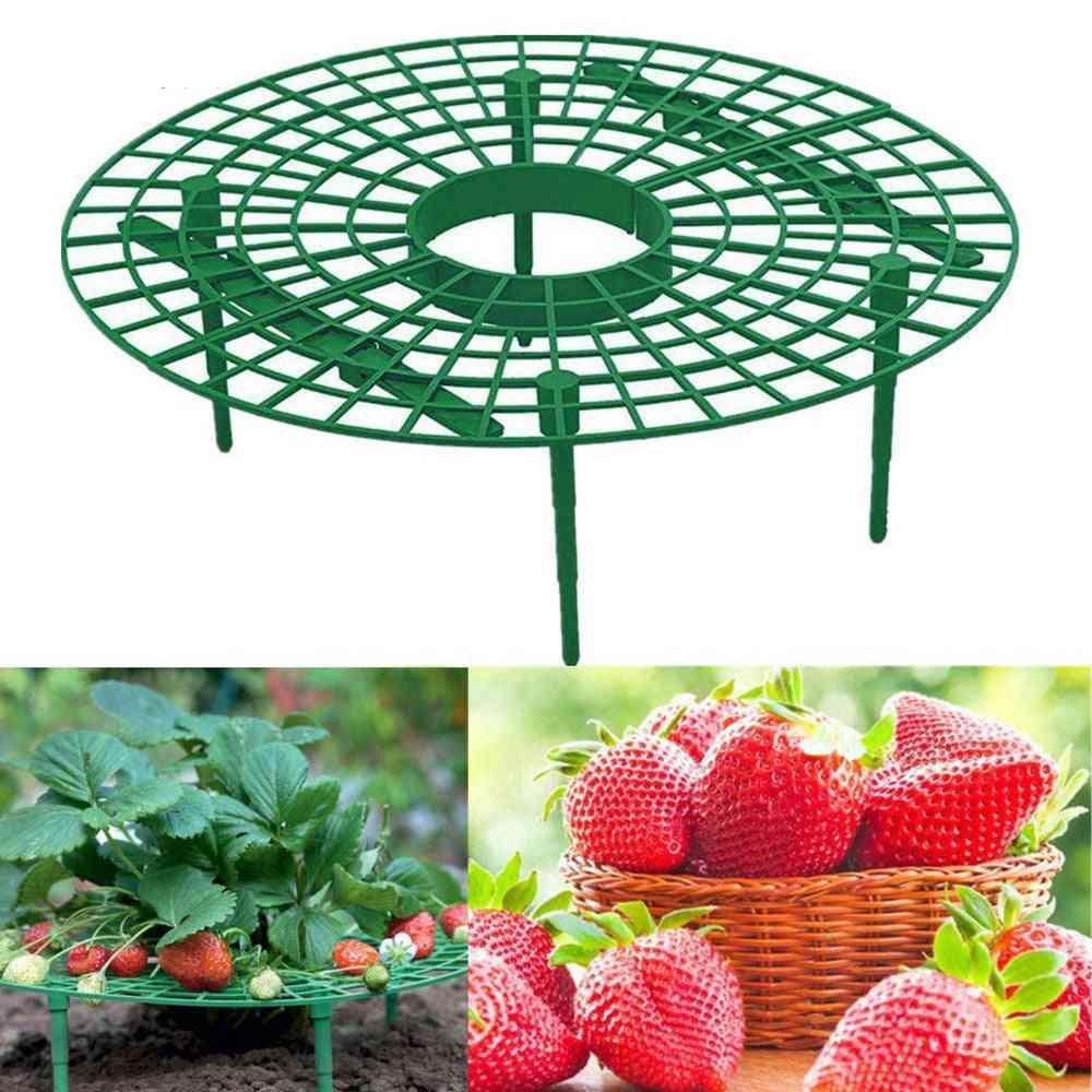 Strawberry Stand Frame Holder Balcony Planting Rack