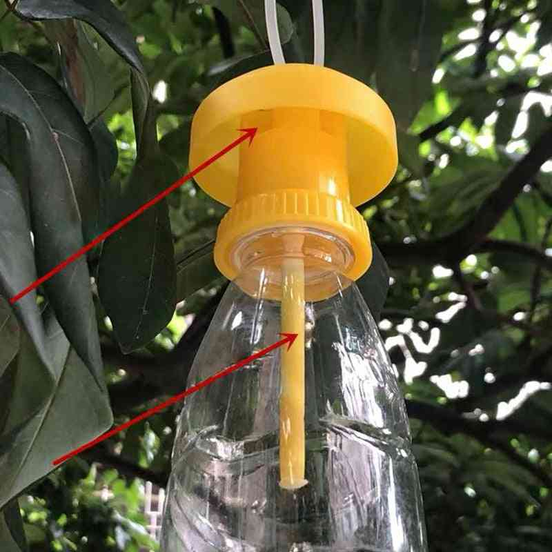 Fruit Fly Trap Cover