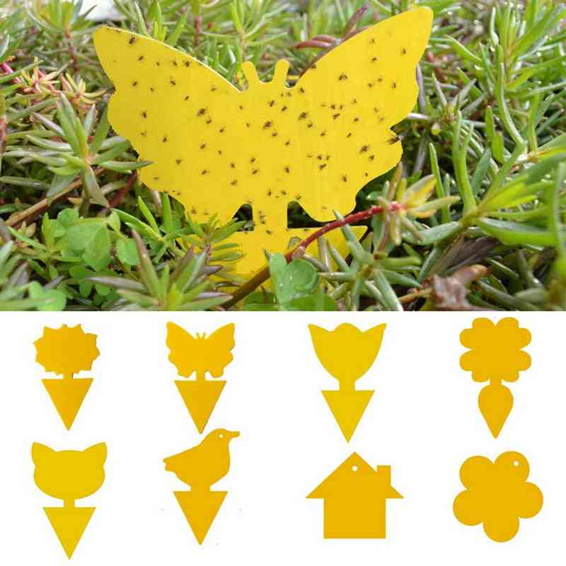 Yellow Strong, Flies Sticky Bugs, Flying Trap Catching, Aphid Pest Killer