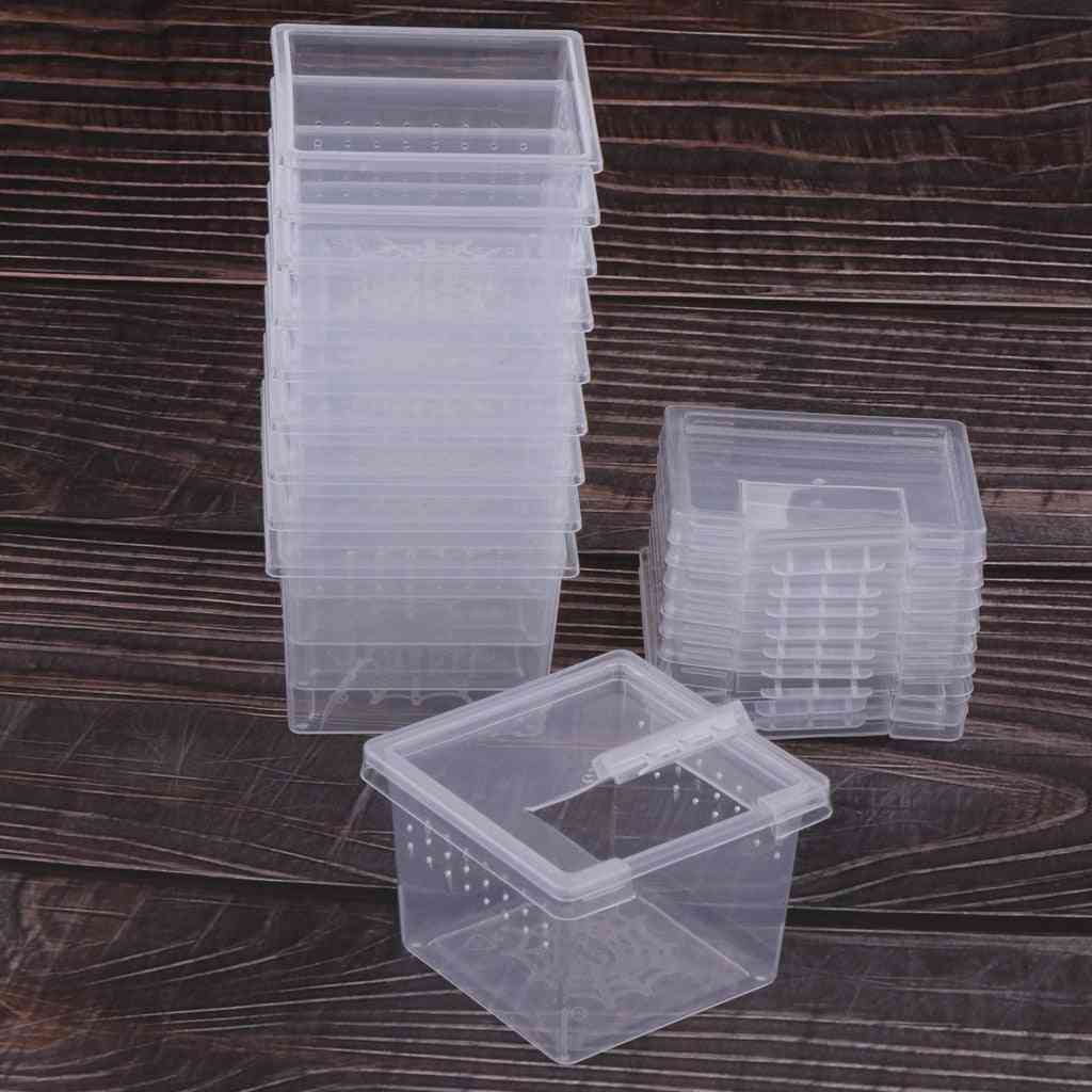 Reptile, Spider Insect Rearing Box For Food Feeding