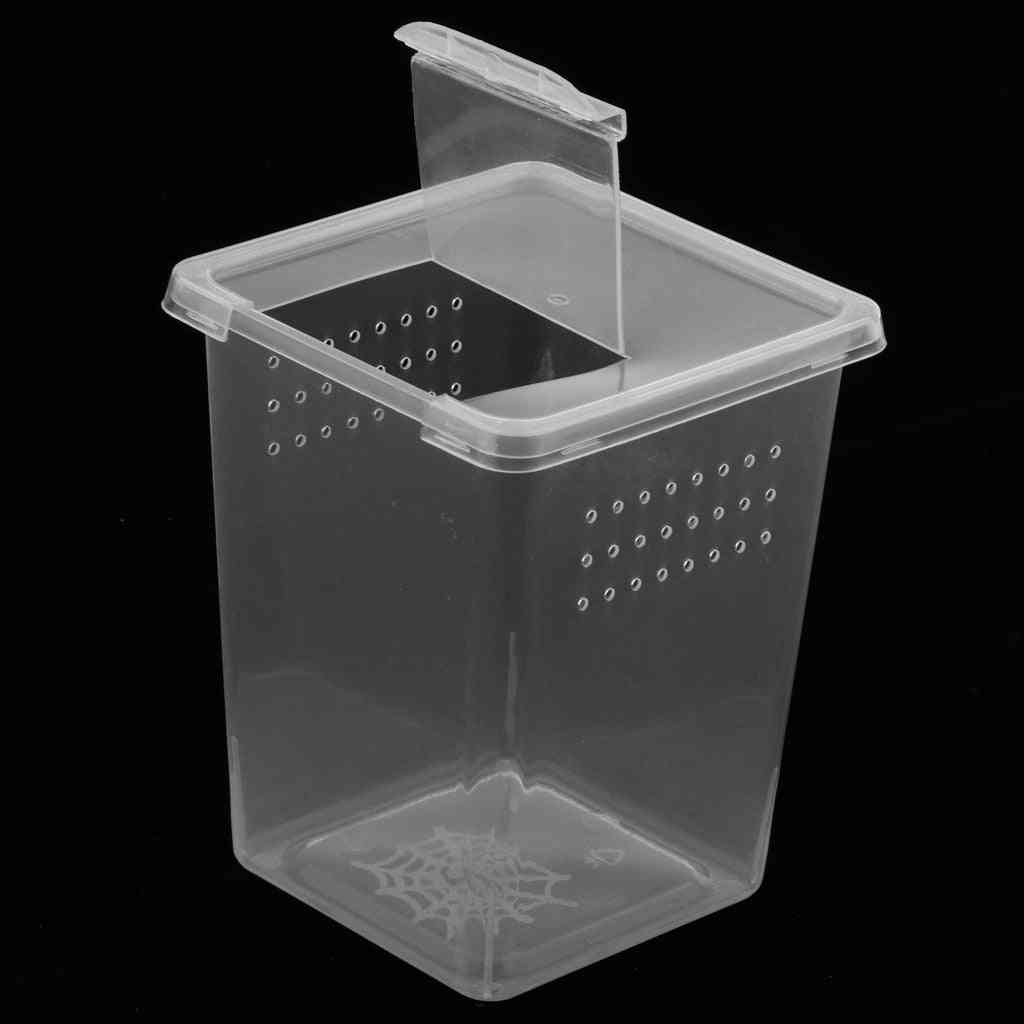 Plastic Insect Spider Habitat Feeding Box, Case, Container