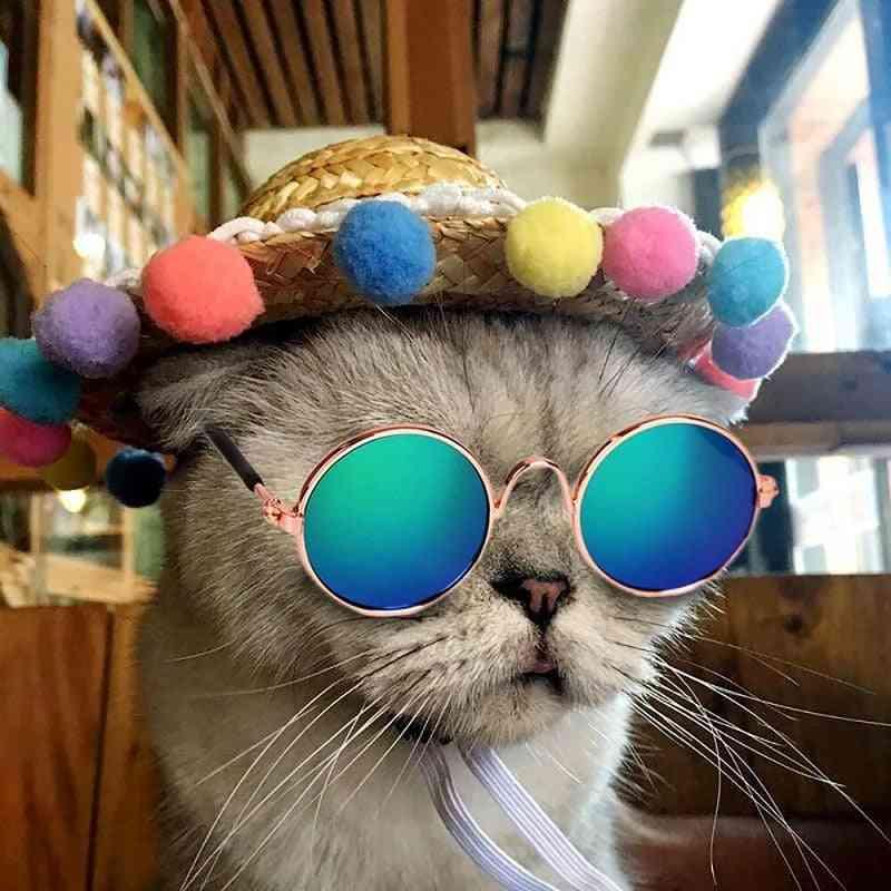 Lovely Pet Cat Dog Glasses, Eye-wear, Sunglasses