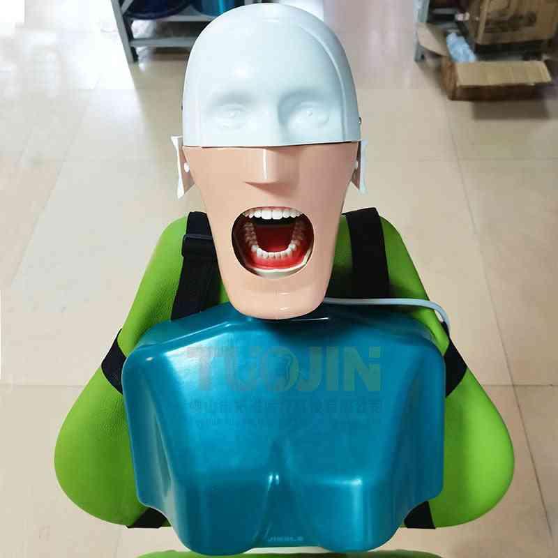 C4 Type Dental Simulation Head Model