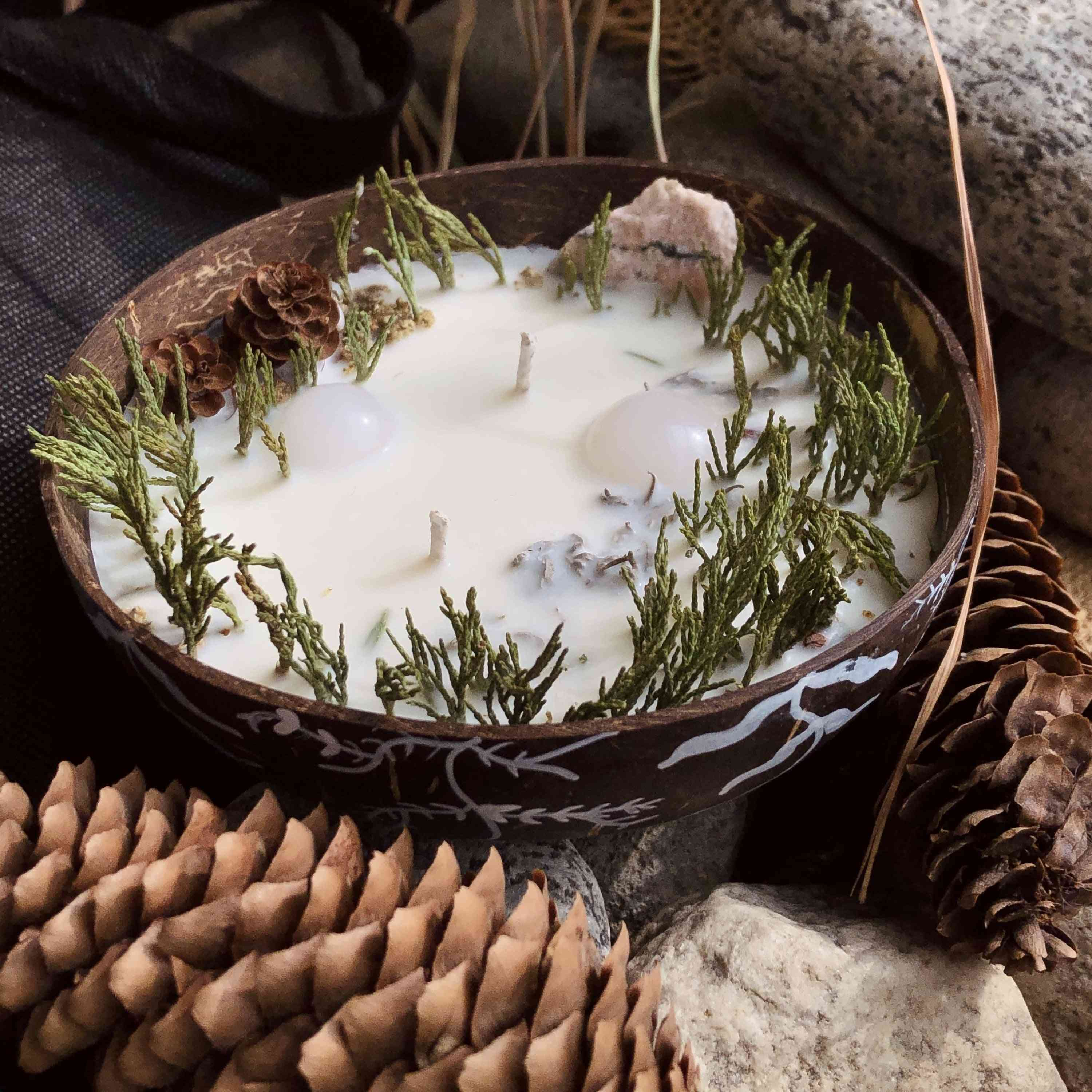 Forest In A Cup Candle - 100% Soy Wax