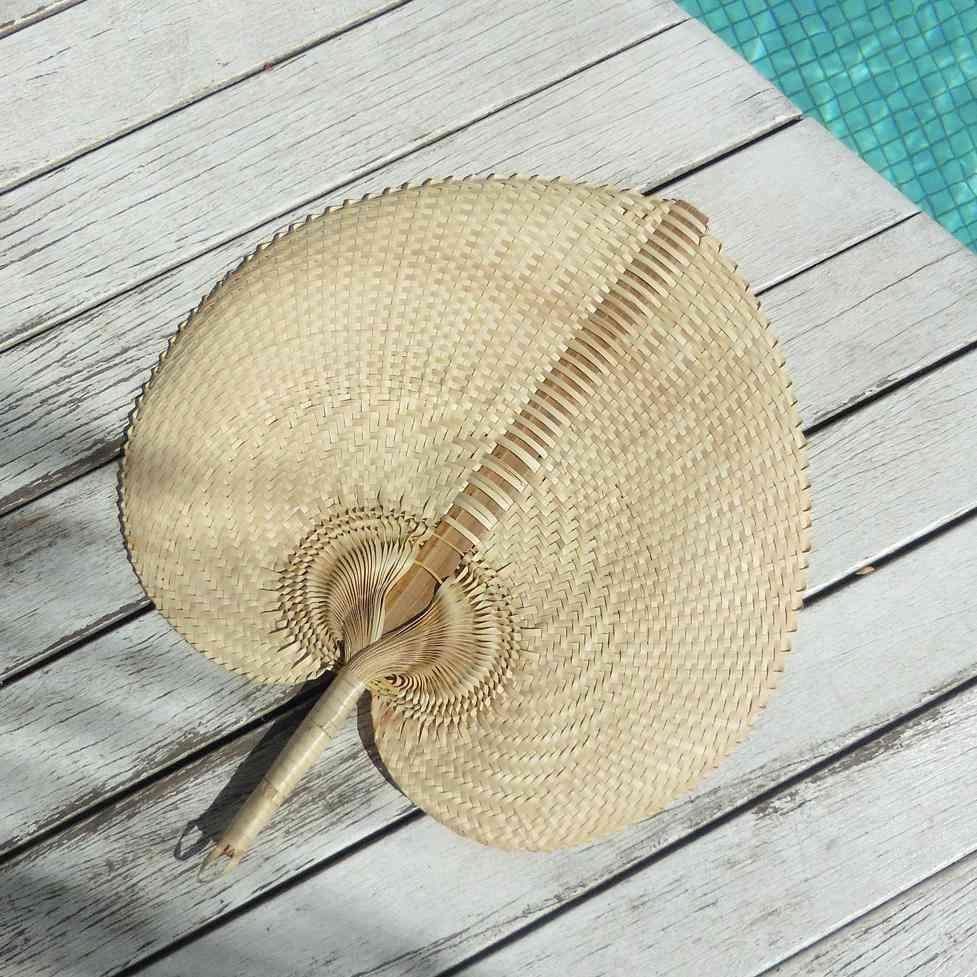 Hand Woven Palm Straws Fan