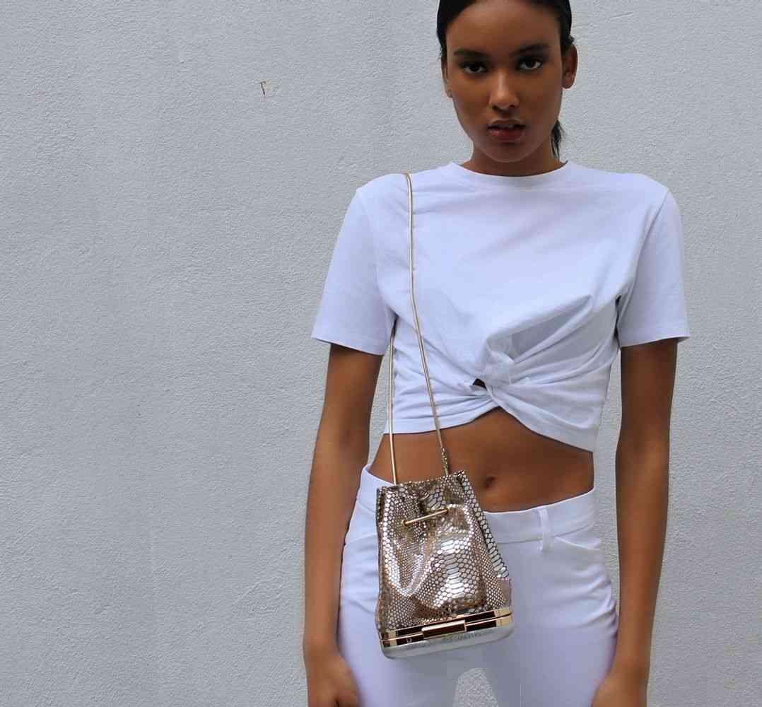 Mini Lambskin Light Gold Snke Pattern Bucket Bag