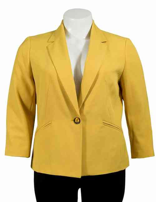 Classy, Sophisticated Single Breasted Blazer