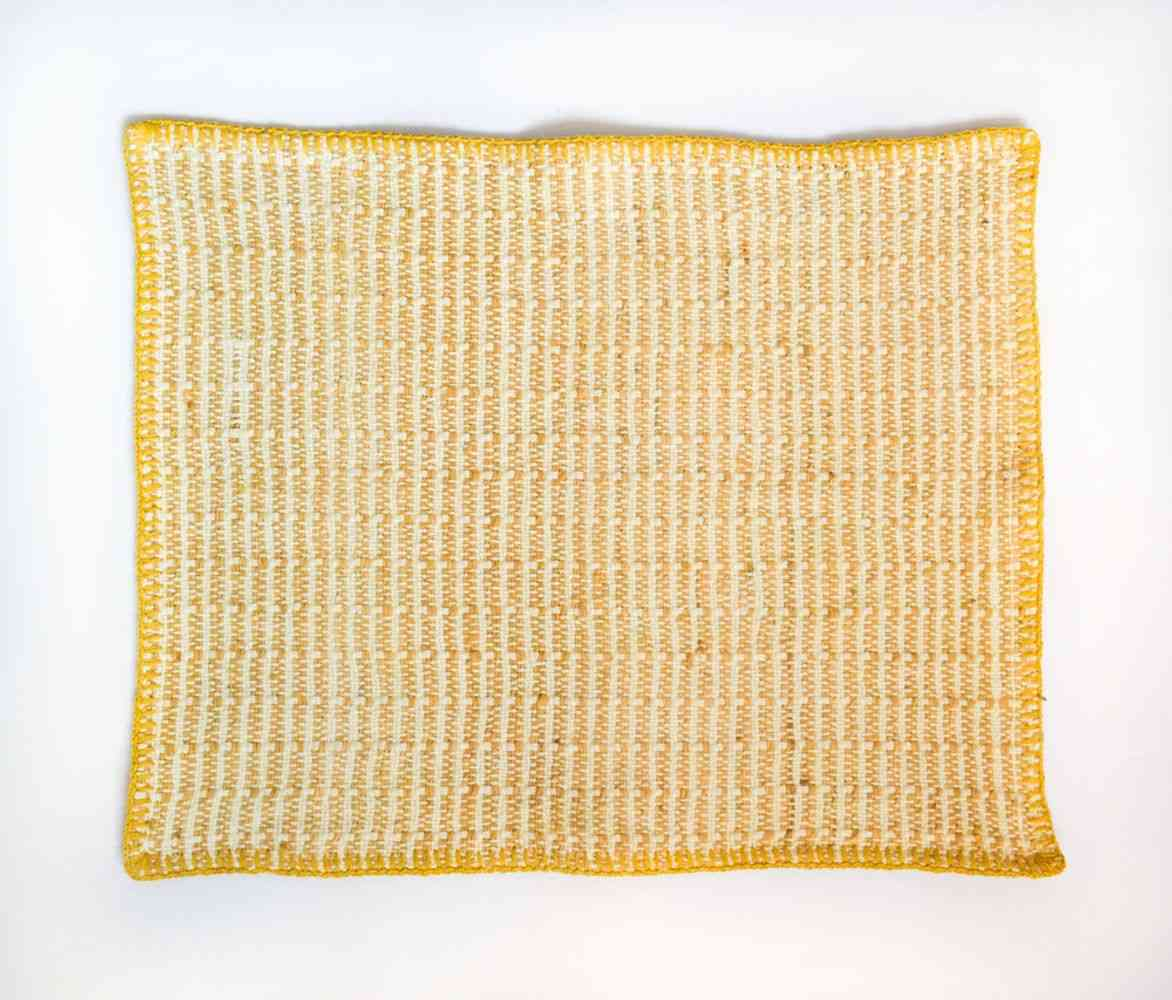 Embroidered  Pitaya Yellow Placemat  (set Of 6)
