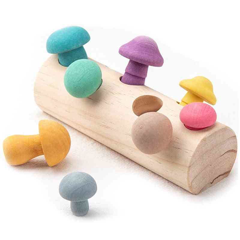 Wooden Rainbow Blocks-mushroom Picking Game