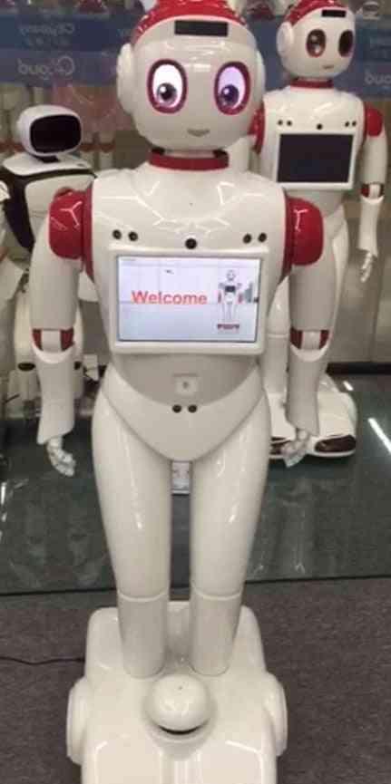 Navigation Obstacle Avoidance Smart Waitress Robot Service Dialogue