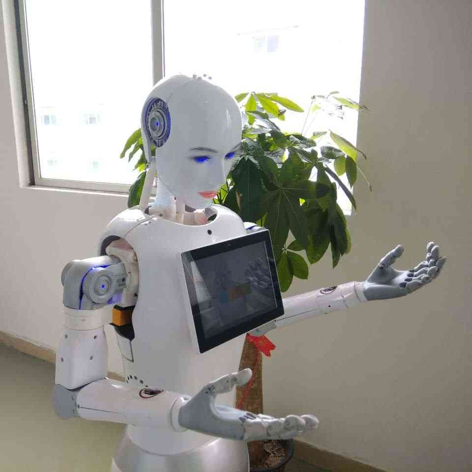 Developing Project Smart Airport Welcome Robot High Quality Service Oriented