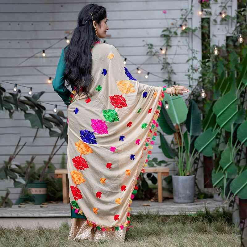 India Ethnic Styles Lady Embroideried Saree Chiffon Shawl &  Woman Hijab Scarf