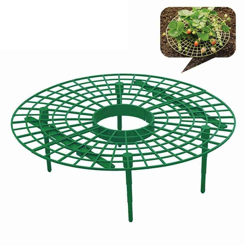 Strawberry Growing Circle Support Rack Plant Tool, Farming, Improve Harvest, Frame Lightweight, Removable Racks