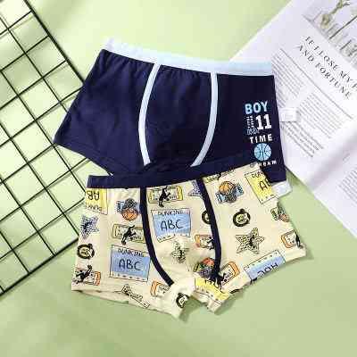 Baby Trucks Cotton Dinosaur Underwear Boxers( Set 1)