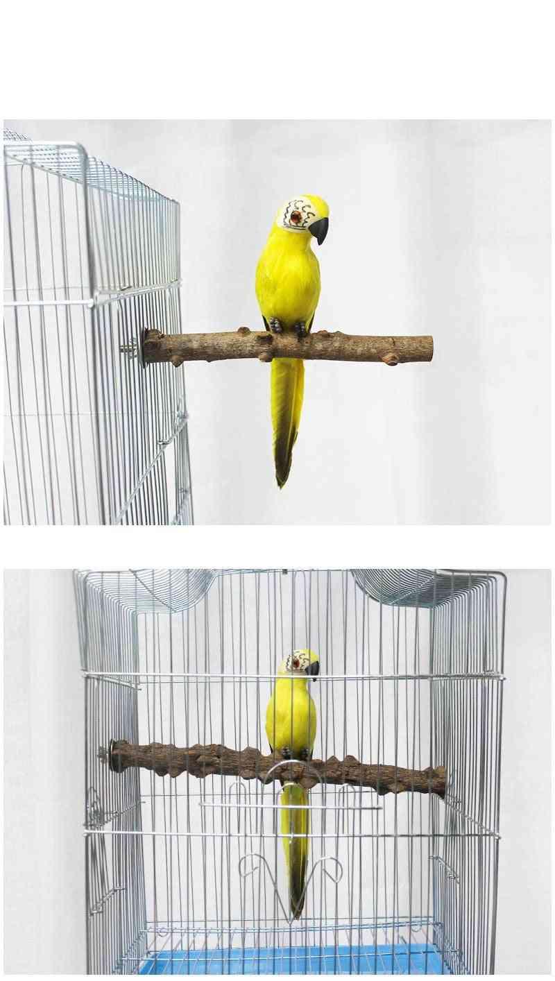 Pet Parrot Bird Wild Grape Wood Pole Prickly Ash Wood Standing Stick